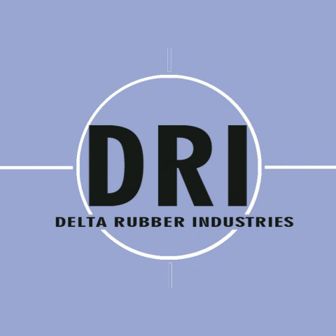logo main partner DRI