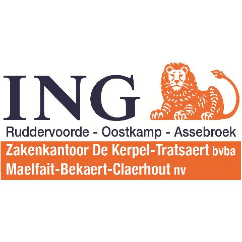 logo main partner ING